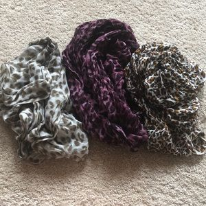 Leopard Scarves Bundle